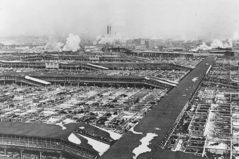 Overview of the Kansas City Stockyards, ca. 1930s