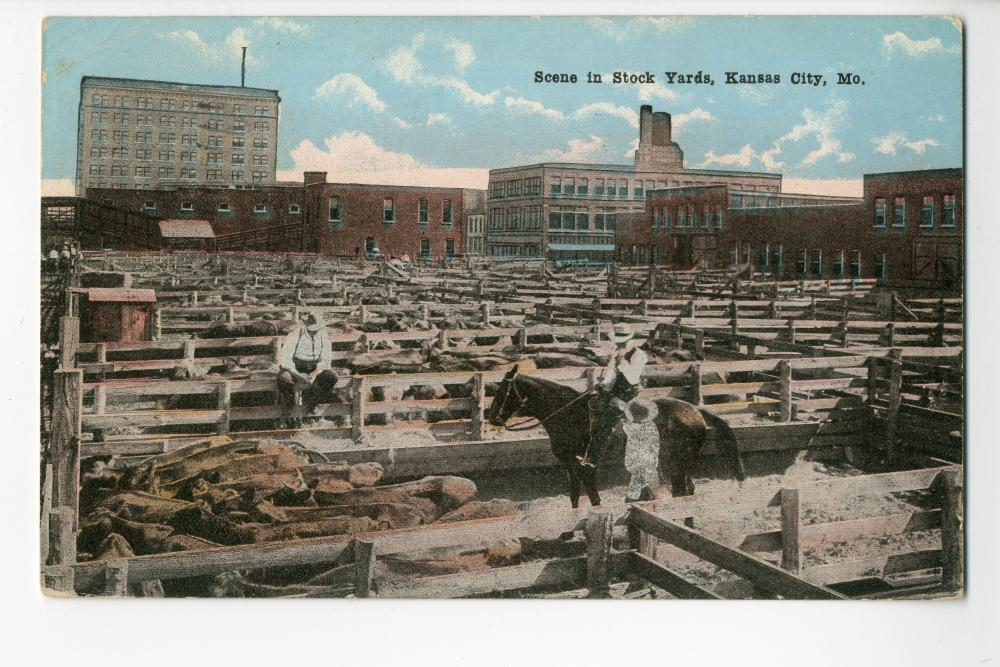Stockyards postcard
