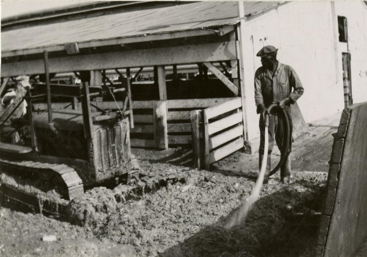 Man washing pens in the stockyards