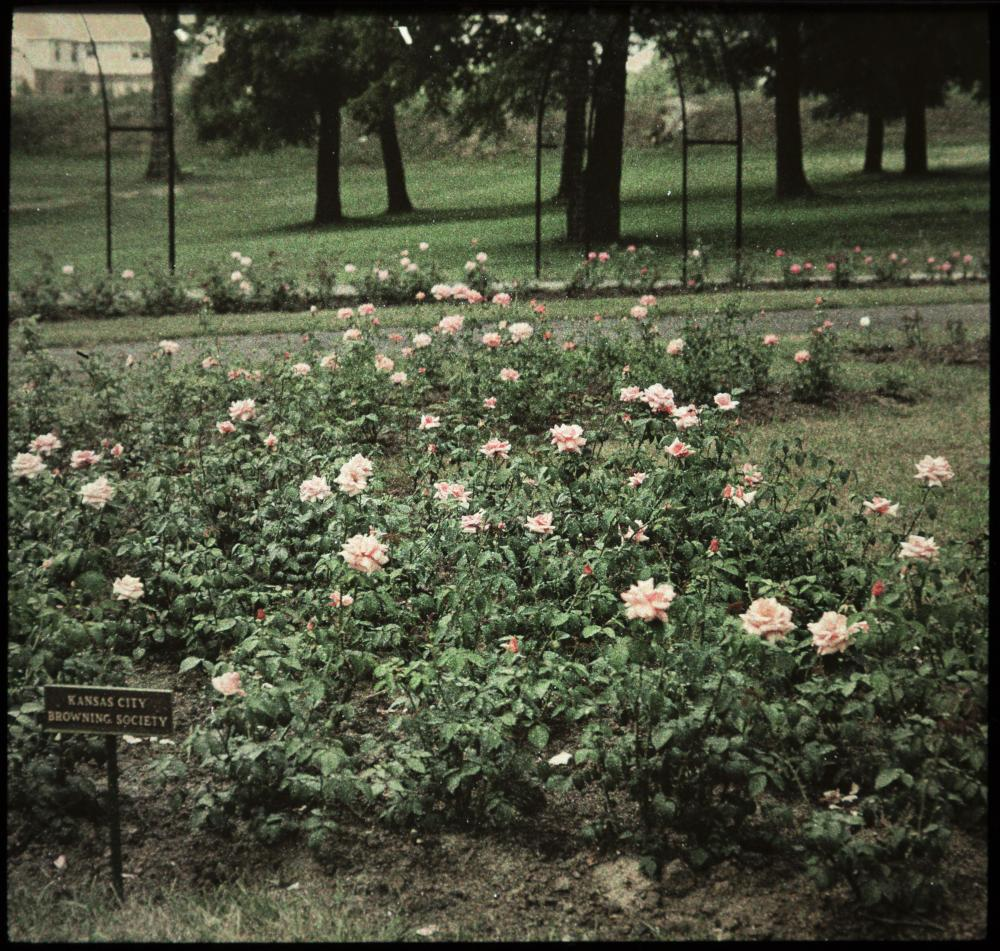 b38f96d1dbec Browning Society Rose Bed