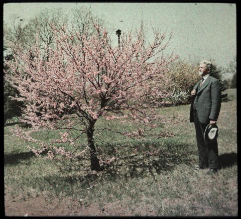 Sid Hare, 1934